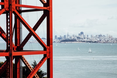 How to Find the Best San Francisco Apartment Dogs